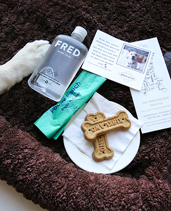 Pet Friendly Amenities at Kimpton Seattle